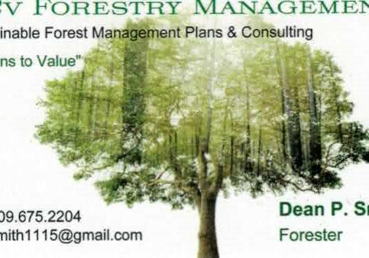 v2v Forestry